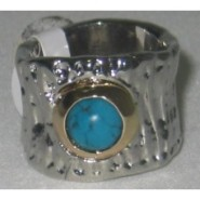 plata oro turquesa (2) (NXPowerLite)-228x228